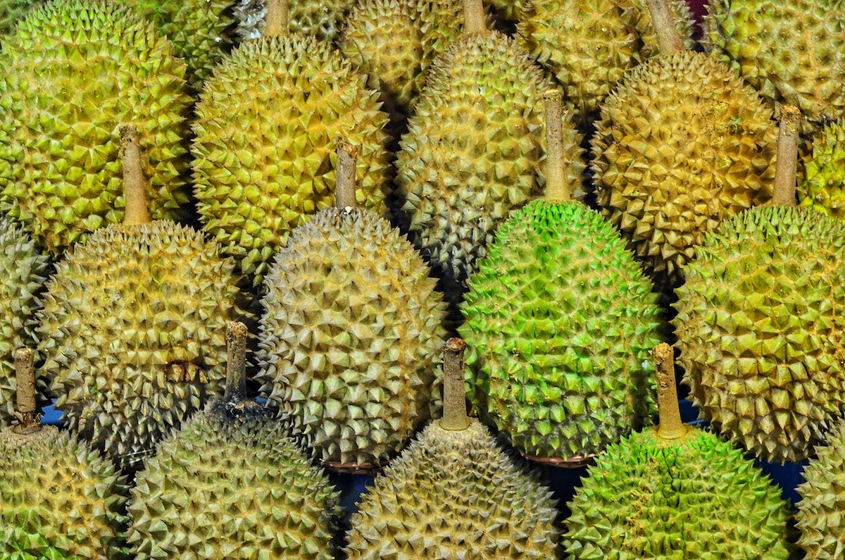 durian-outside
