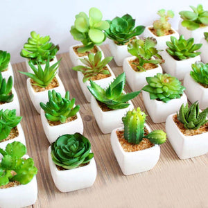 Green Artificial Succulents Plants Flowers Decoration Collection from Gallery Wallrus | Eclectic Wall Art & Decor with Worldwide Shipping