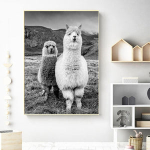 Alpacas Black & White Photograph Wall Art Print from Gallery Wallrus | Eclectic Wall Art & Decor with Worldwide Shipping