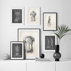 Anatomy Skeleton Patent Wall Art Prints Mix & Match 2 from Gallery Wallrus | Eclectic Wall Art & Decor with Worldwide Shipping