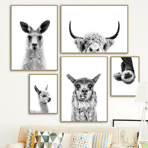 Black & White Kangaroo Alpaca Yak Otter Sloth Wall Art Gallery Prints from Gallery Wallrus | Eclectic Wall Art & Decor with Worldwide Shipping