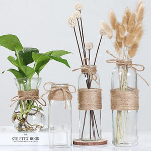 Nordic Clear Water Hydroponics Flower Rope Vases from Gallery Wallrus | Eclectic Wall Art & Decor with Worldwide Shipping