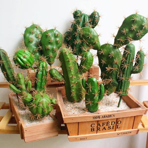 Artificial Cacti Succulent Plants Decoration from Gallery Wallrus | Eclectic Wall Art & Decor with Worldwide Shipping