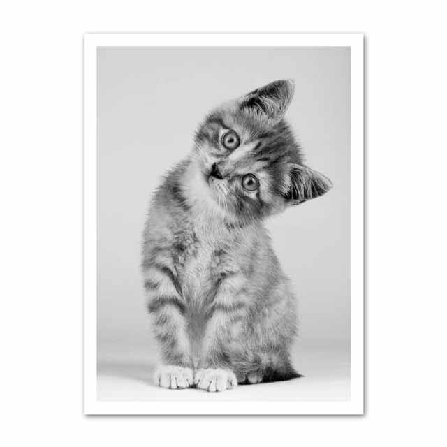 Large Selection of Gallery Wall Cat Art Prints 1 from Gallery Wallrus | Eclectic Wall Art & Decor with Worldwide Shipping