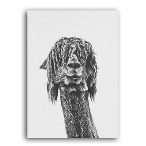 Alpaca And Sloth Cool Paintings Wall Art Duo from Gallery Wallrus | Eclectic Wall Art & Decor with Worldwide Shipping
