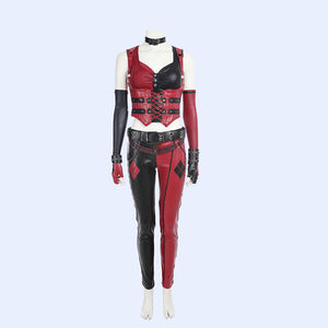 Batman Arkam City Harley Quinn cosplay costume