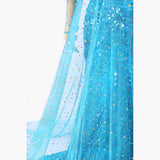 Frozen Elsa Princess dress costume cosplay custom
