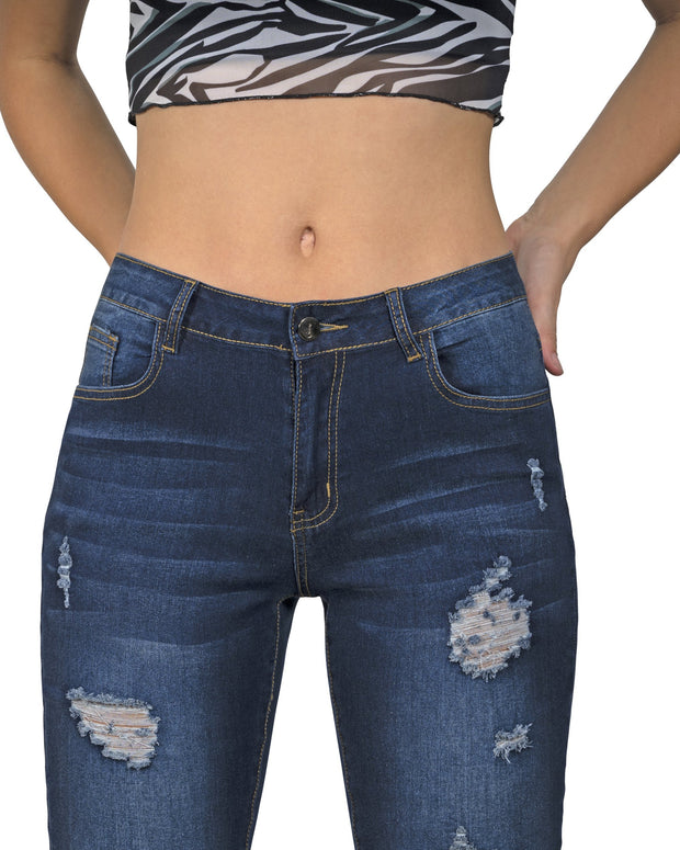 Arden Distressed Skinny Jeans