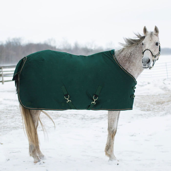 Horse wearing hunter green turnout blanket.