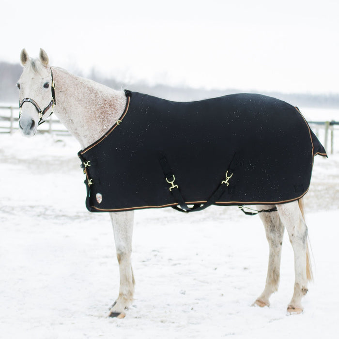 Horse wearing black turnout blanket
