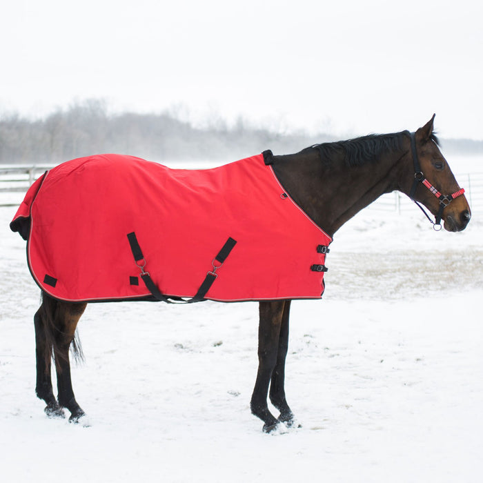 Bay horse wearing red heavy weight turnout blanket
