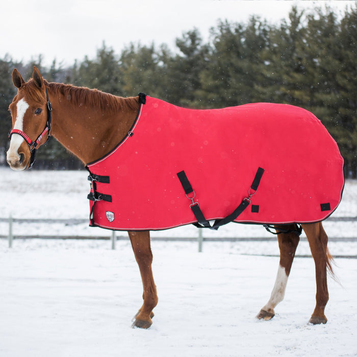 Horse wearing red turnout blanket.