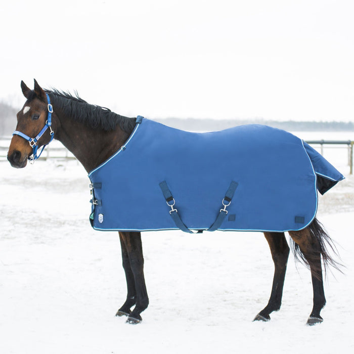 Horse wearing blue turnout blanket.