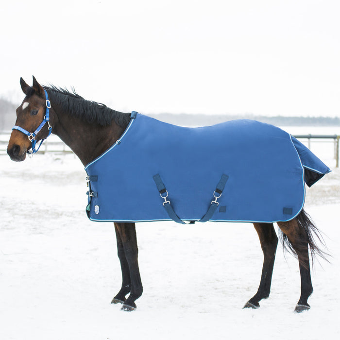 Bay horse wearing blue heavy weight turnout blanket