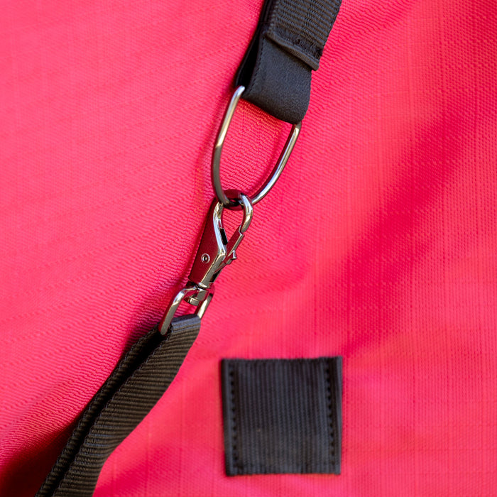 closeup of belly strap clip