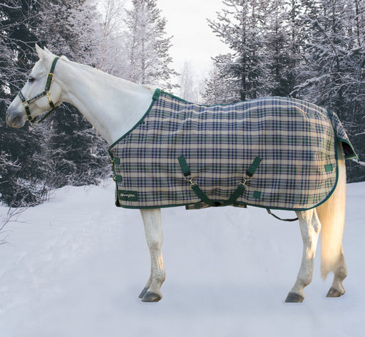 Kensington SuperMesh waterproof turnout winter blanket. Horse in snow. Green, tan, and plum plaid