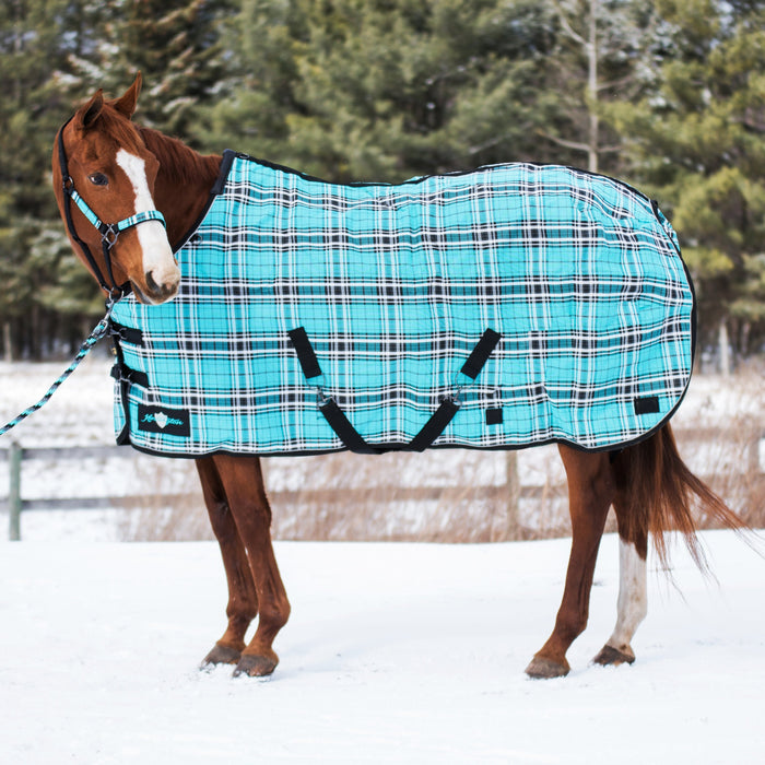 Kensington SuperMesh waterproof turnout winter blanket. Horse in snow. Turquoise plaid