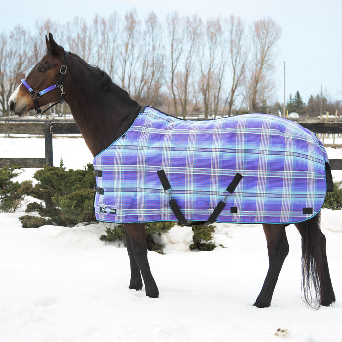 Kensington SuperMesh waterproof turnout winter blanket. Horse in snow. Purple and blue plaid