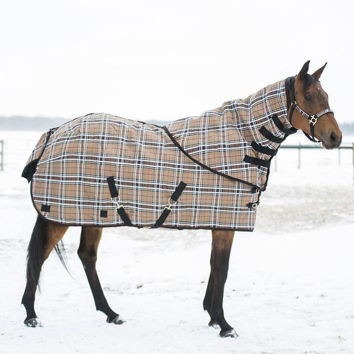 Horse in snow wearing tan, black, and white plaid neck warmer and matching blanket