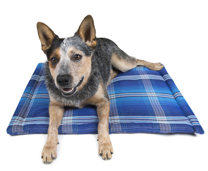 Indestructible chew proof dog bed crate pad. Toughest dog bed. Blue plaid