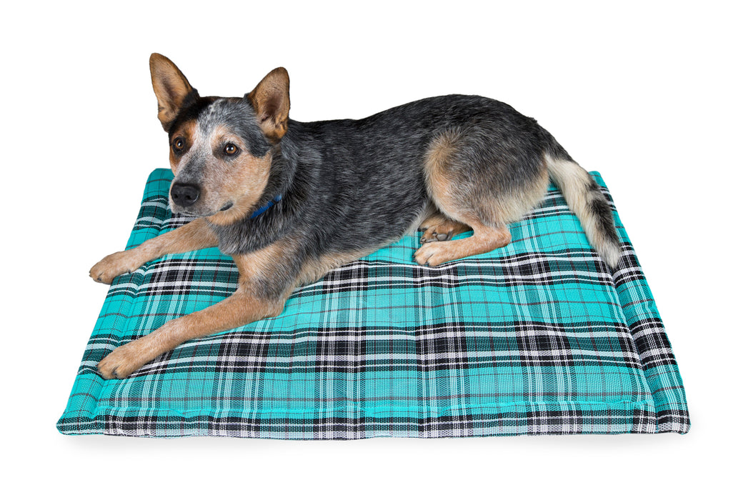 Indestructible chew proof dog bed crate pad. Toughest dog bed. Turquoise plaid