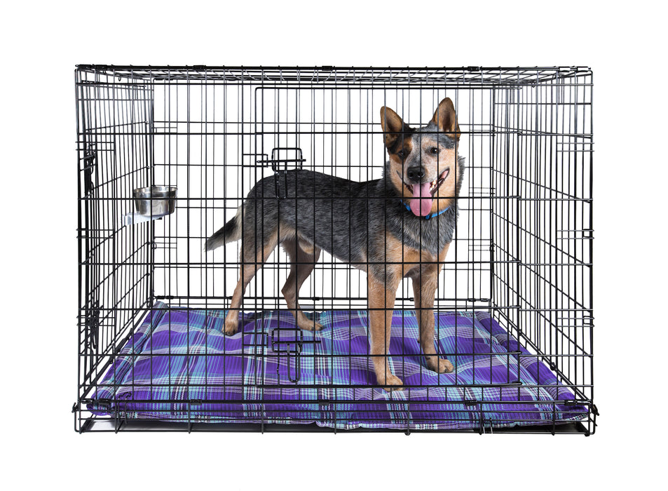 Indestructible chew proof dog bed crate pad. Toughest dog bed. Purple plaid