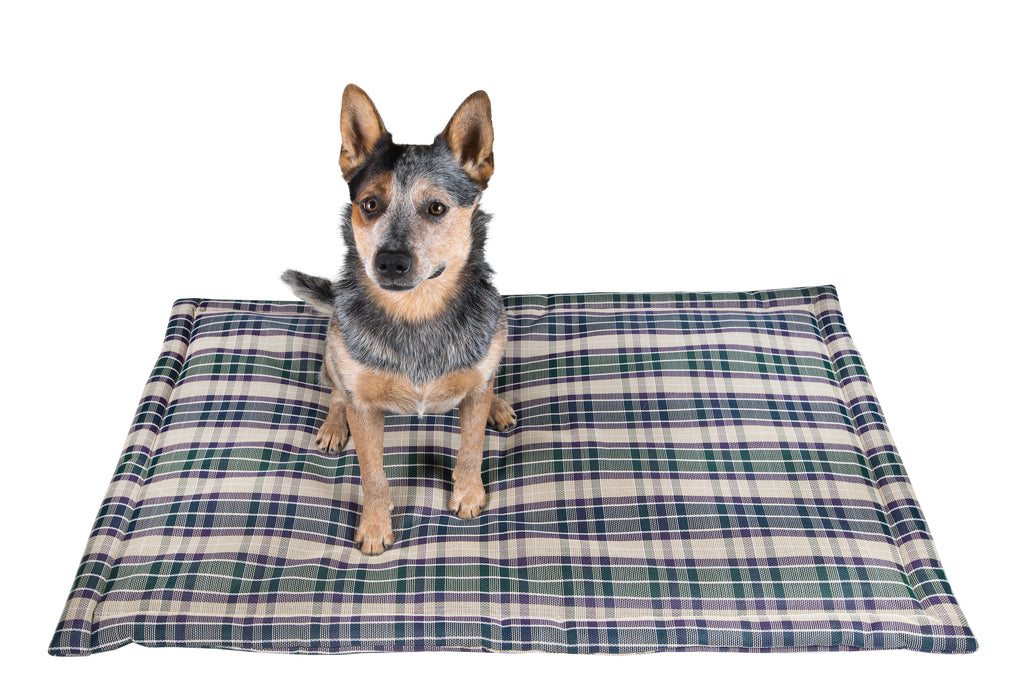 Toughest dog bed. Green plaid. Crate pad bed for big dog breeds