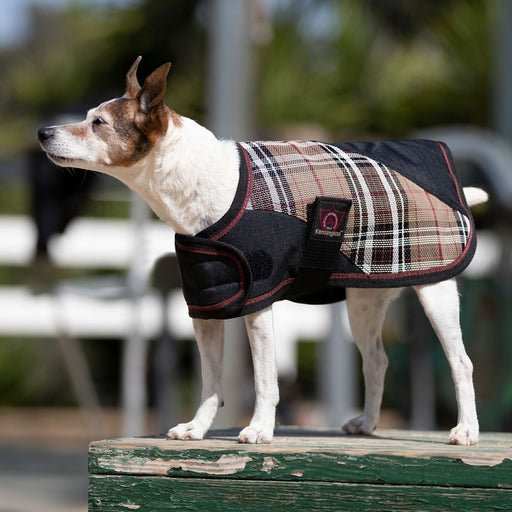 Kensington dog blanket coat. Waterproof, snow proof. Black and Tan plaid.