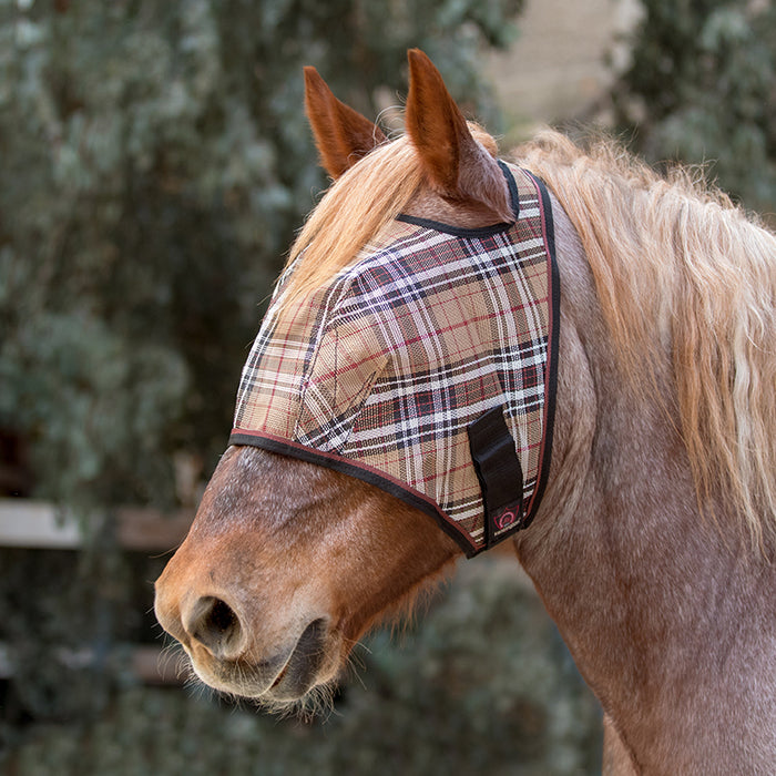 Draft fly mask with open forelock and web trim. Tan