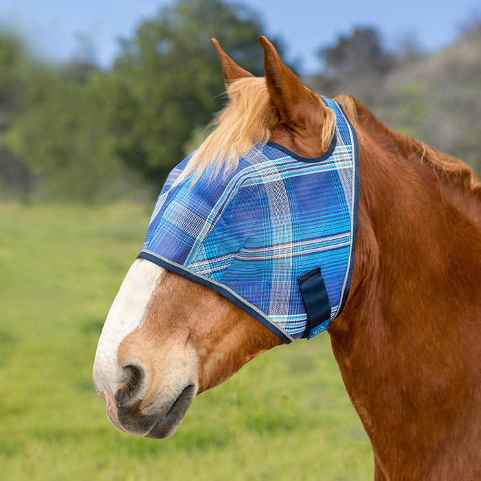 Draft fly mask with open forelock and web trim. Blue