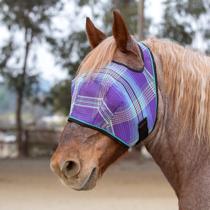 Draft fly mask with open forelock and web trim. Purple