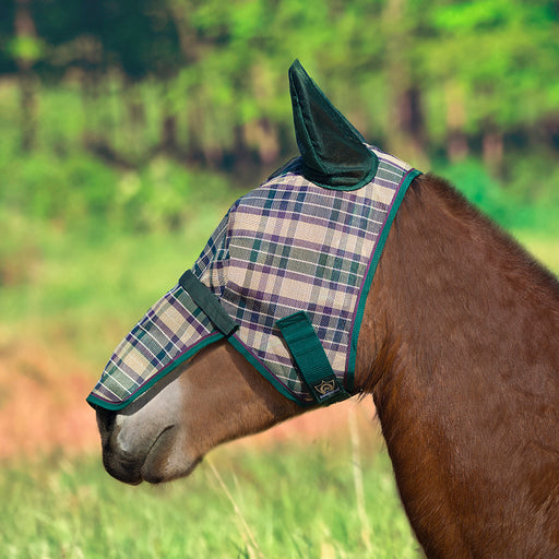 Draft fly mask with web trim, soft mesh ears. Green