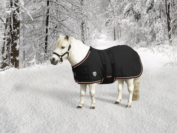 mini horse wearing black winter blanket turnout