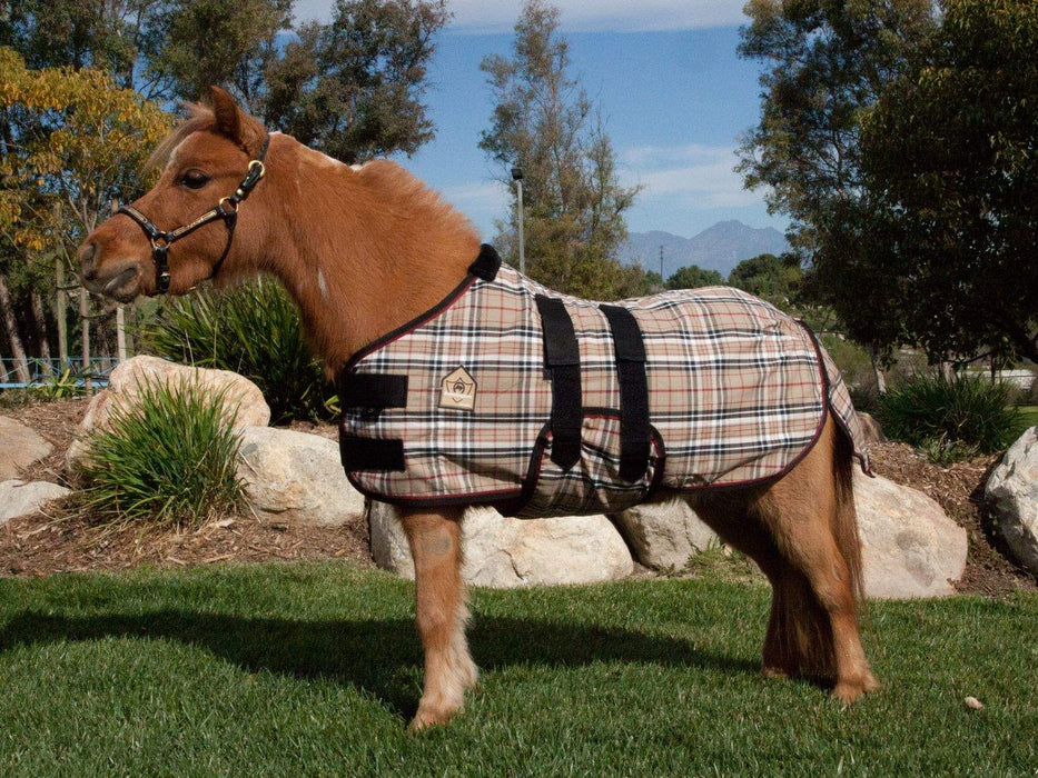 Mini cotton turnout sheet. Tan plaid miniature horse blanket