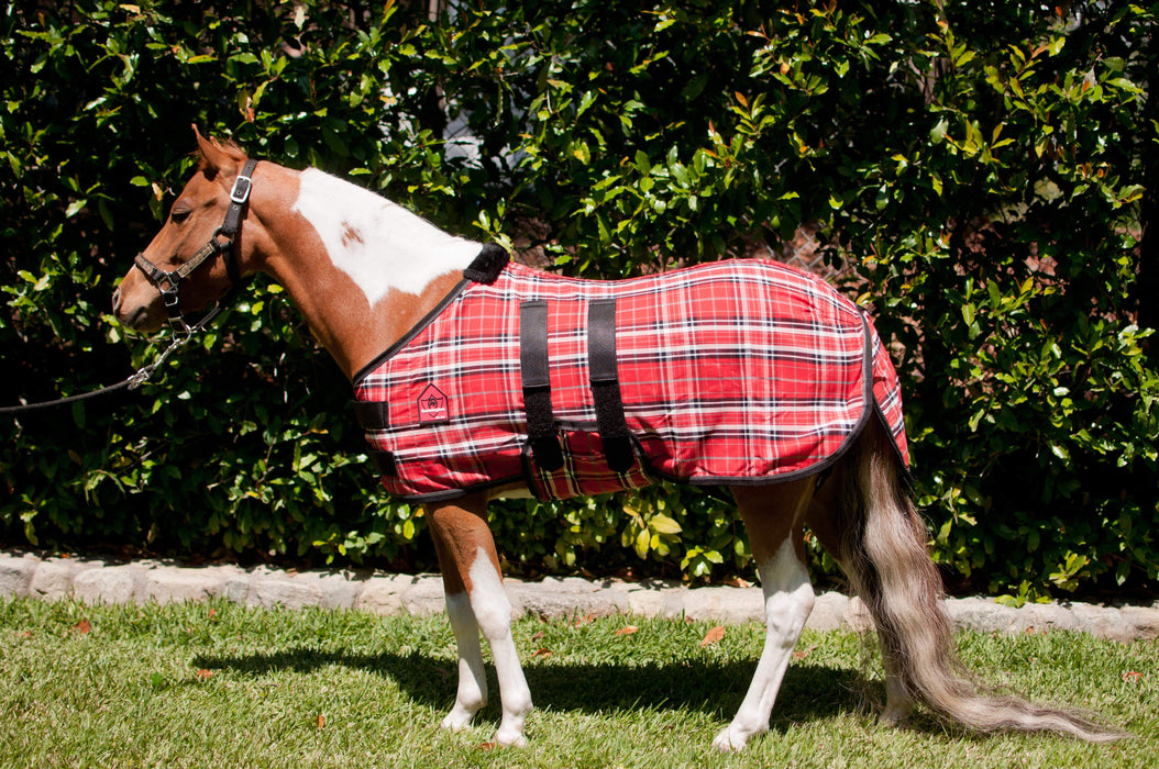 Mini cotton turnout sheet. Red plaid miniature horse blanket