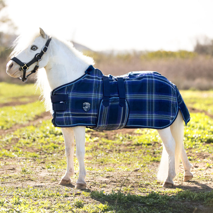 Mini cotton turnout sheet. Blue Plaid miniature horse blanket