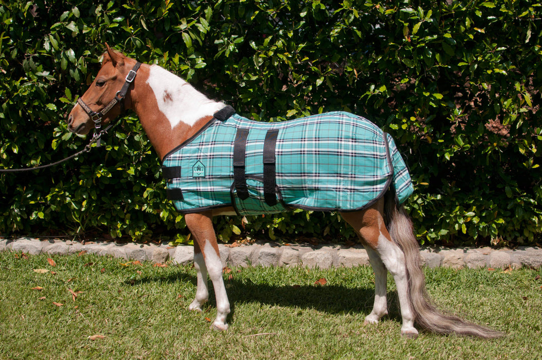Mini cotton turnout sheet. Turquoise plaid miniature horse blanket