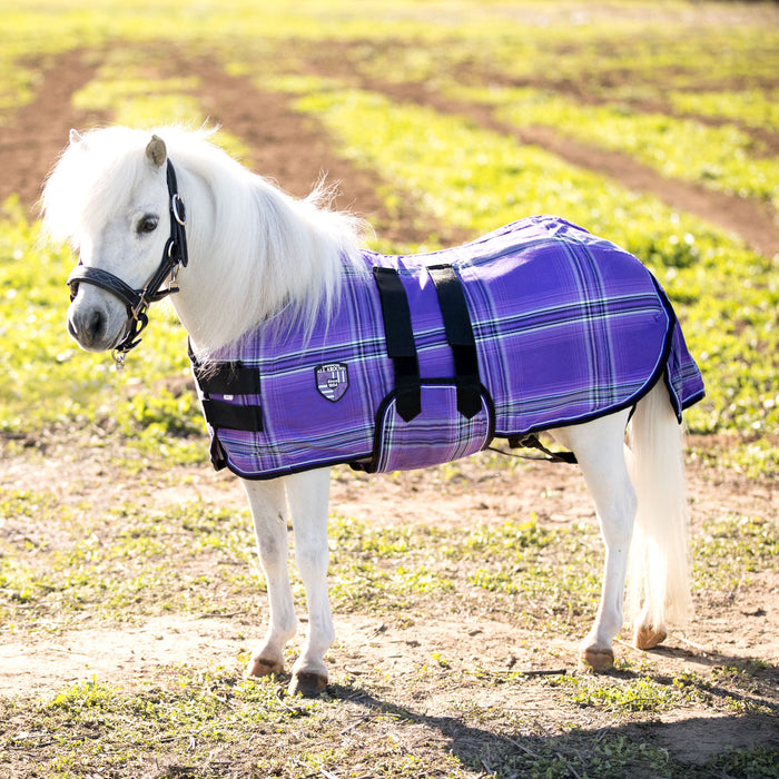Mini cotton turnout sheet. Purple plaid miniature horse blanket