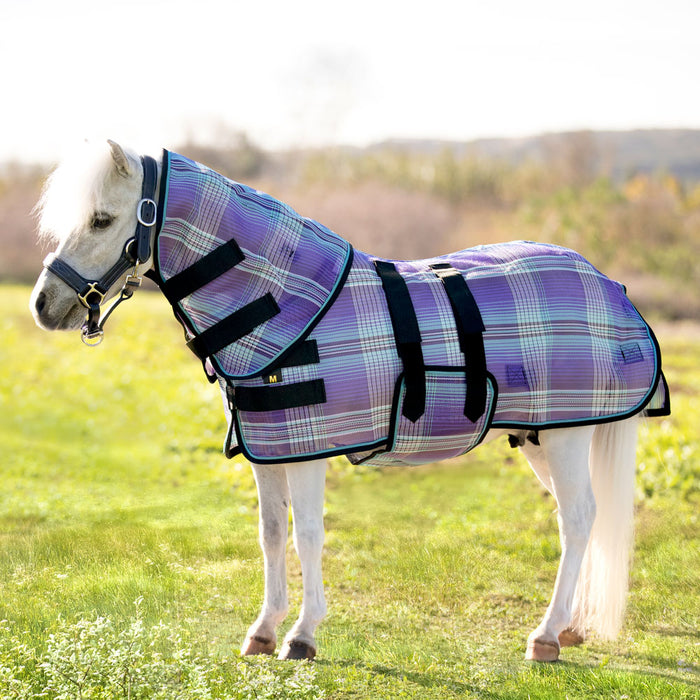 Mini textilene protective fly sheet. UV protection. Miniature horse wearing flysheet and neck cover. Purple plaid