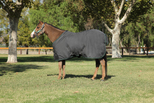 Pony All Around 1200Denier Medium Weight Turnout