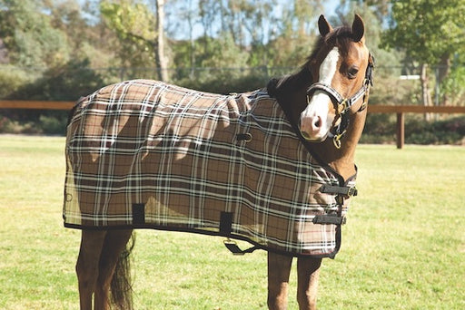 Pony Protective Fly Sheet