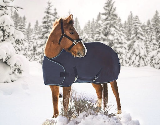 Yearling horse turnout winter blanket