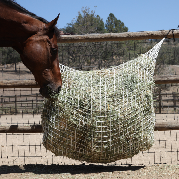 Freedom Feeder Extended Day / 2 String Bale