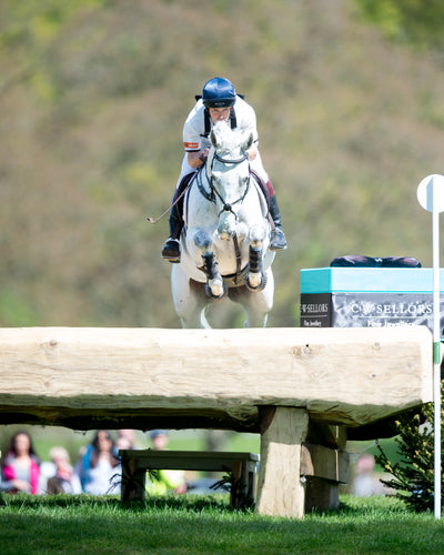 Platinum Club Harry Meade March 2019 Cross Country Jumping Riders CLINIC - Member's GUEST TICKET