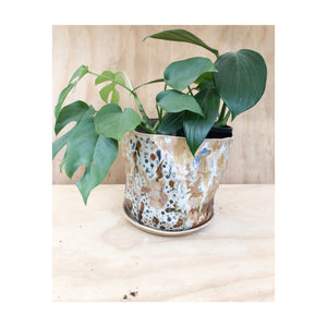 Jungle Baby Large Planter #1
