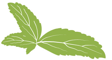 What is Stevia? Is stevia good for you? Benefits of Stevia