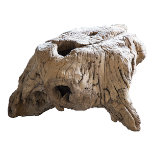 Organic Shaped Old Wood Stump Coffee Table