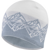 Salomon Graphic Beanie