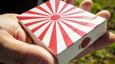 Closeup of Hinode box showing the Japanese sun pattern