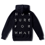 NSFW Not Sure For What Hoodie